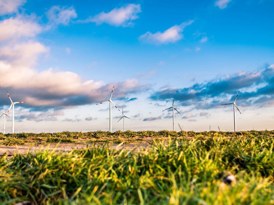 Slika: Nekaj misli o zeleni energiji